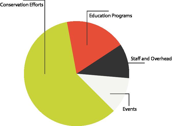 Agloe Pie Chart
